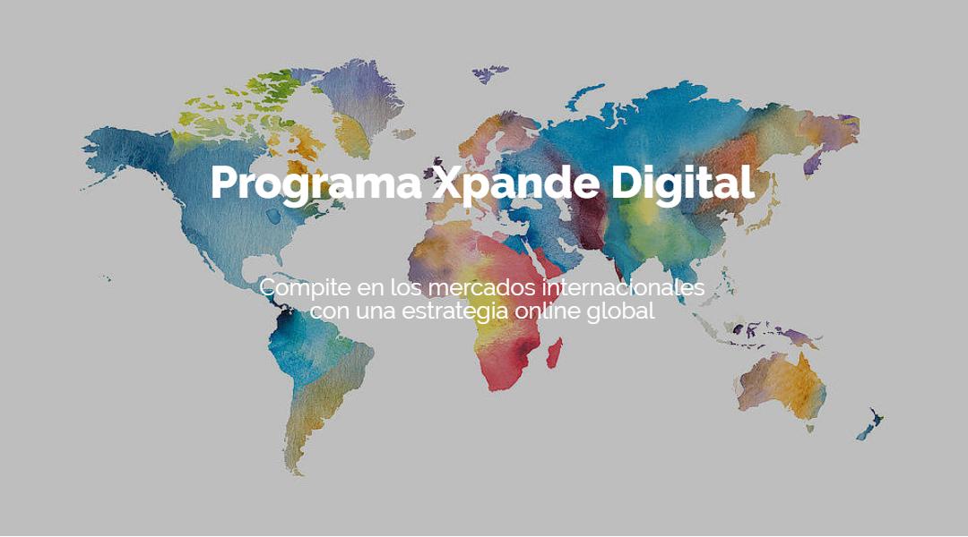 Programa Xpande Digital 2020